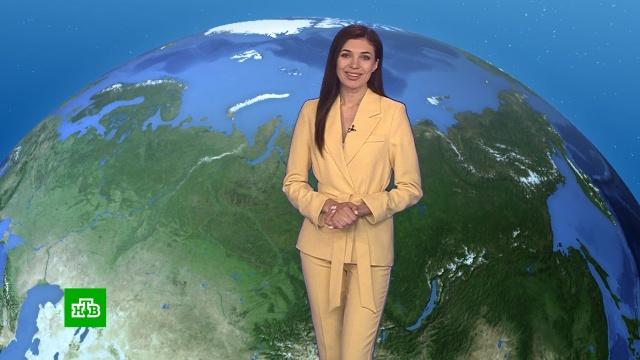Утренний прогноз погоды на 10августа.погода, прогноз погоды.НТВ.Ru: новости, видео, программы телеканала НТВ