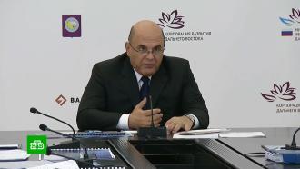 Мишустин оценил крупные инвестпроекты на Чукотке