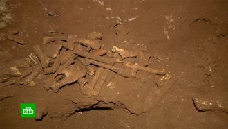 Капсула времени: что нашли ученые в доисторической крымской пещере
