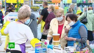 Гости ярмарки вКоломенском попробовали мед из 25российских регионов