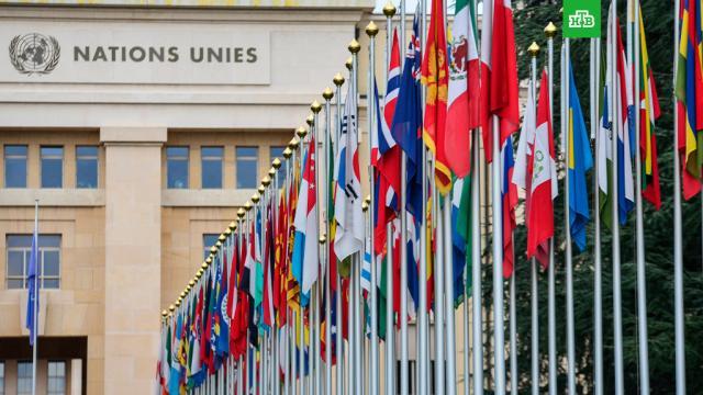 Совбез ООН отклонил резолюцию США по продлению эмбарго на продажу оружия Ирану.Резолюция США о продлении оружейного эмбарго против Ирана набрала всего 2 голоса из 15 в Совбезе ООН.Иран, ООН, США, оружие, ядерное оружие.НТВ.Ru: новости, видео, программы телеканала НТВ
