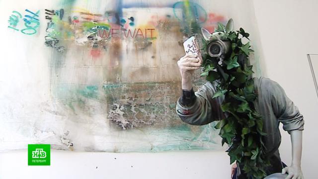 Как виртуальная реальность повлияла на современное искусство.Санкт-Петербург, выставки и музеи, искусство.НТВ.Ru: новости, видео, программы телеканала НТВ