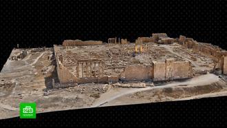 Петербургские ученые передали Сирии 3D-модель Пальмиры