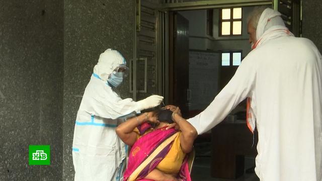 Индия иМолдавия хотят закупить российскую вакцину от COVID-19.врачи, Индия, коронавирус, медицина, Молдавия, прививки, эпидемия.НТВ.Ru: новости, видео, программы телеканала НТВ