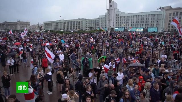 «Не митинговать, а драться»: как белорусские радикалы готовились к протестам.Белоруссия, Лукашенко, беспорядки, митинги и протесты, оппозиция.НТВ.Ru: новости, видео, программы телеканала НТВ