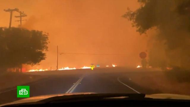 Площадь лесных пожаров вКалифорнии стремительно растет.США, лесные пожары.НТВ.Ru: новости, видео, программы телеканала НТВ