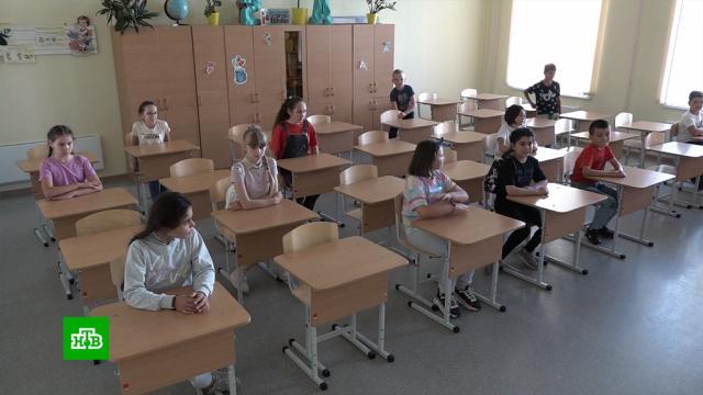 Онлайн или офлайн: школьникам многих регионов разрешили учиться дистанционно.образование, школы.НТВ.Ru: новости, видео, программы телеканала НТВ