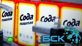 Суд арестовал акции Башкирской содовой компании