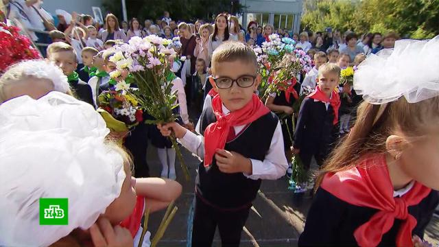 День знаний во время пандемии: как COVID-19 изменил российские школы.дети и подростки, коронавирус, образование, школы.НТВ.Ru: новости, видео, программы телеканала НТВ