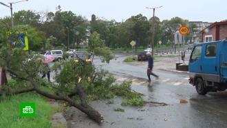Супертайфун «Майсак» принес вПриморье затяжные ливни иураганный ветер
