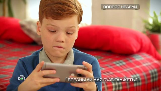 Вредныли гаджеты для глаз?НТВ.Ru: новости, видео, программы телеканала НТВ