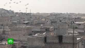 Всирийском Алеппо возобновили уличные экскурсии
