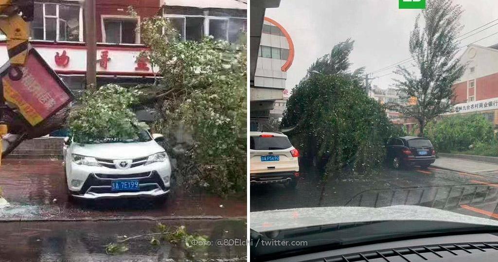 стоимости колодца ураган мария новости фото отличаются