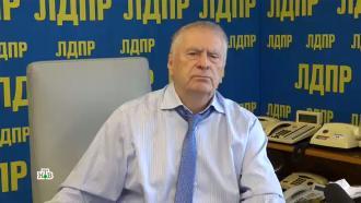 Жириновский назвал цель санкций из-за Навального.НТВ.Ru: новости, видео, программы телеканала НТВ