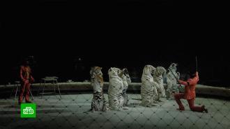 Российские цирки готовятся коткрытию сезона