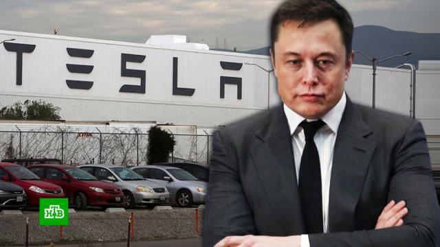 Акции Tesla рухнули на 21%, Илон Маск потерял 14, 3млрд долларов.Илон Маск, США, биржи, миллионеры и миллиардеры.НТВ.Ru: новости, видео, программы телеканала НТВ
