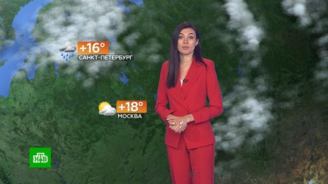 Прогноз погоды на 12 сентября.погода, прогноз погоды.НТВ.Ru: новости, видео, программы телеканала НТВ