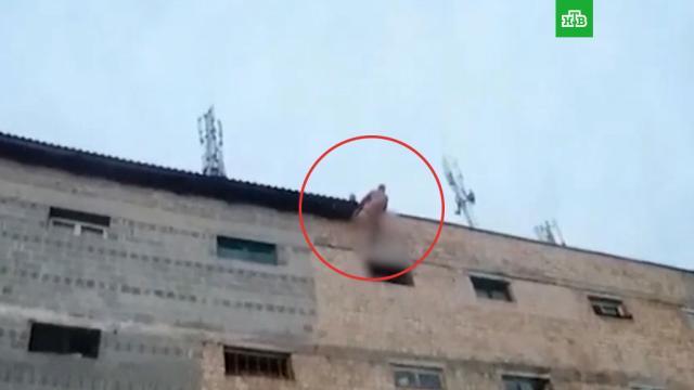 Голый киевлянин разбил окно собакой иизбил соседа ложкой для обуви.Киев, Украина, драки и избиения, жестокость, нападения, полиция.НТВ.Ru: новости, видео, программы телеканала НТВ