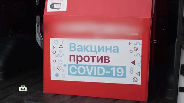 Первая партия вакцины «СпутникV» направлена врегионы.болезни, коронавирус, прививки, эпидемия.НТВ.Ru: новости, видео, программы телеканала НТВ