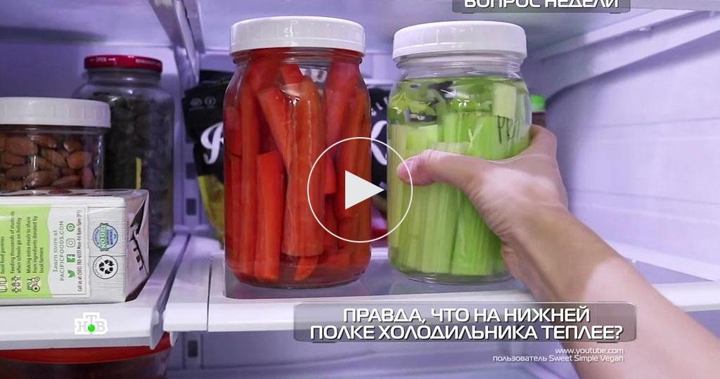 Как правильно хранить продукты вхолодильнике?