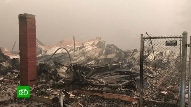 «Это безумие»: западное побережье США задыхается в дыму пожаров.США, лесные пожары, экология.НТВ.Ru: новости, видео, программы телеканала НТВ
