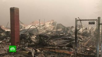 «Это безумие»: западное побережье США задыхается в дыму пожаров
