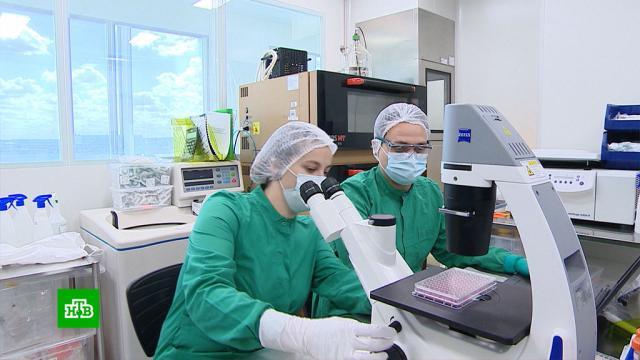 Вряде регионов России половина населения имеет иммунитет против COVID-19.болезни, коронавирус, эпидемия.НТВ.Ru: новости, видео, программы телеканала НТВ
