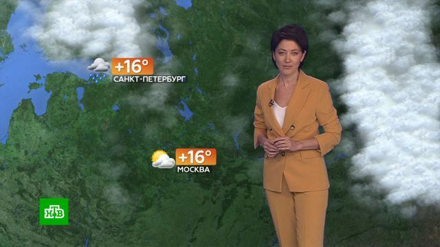 Прогноз погоды на 16сентября.погода, прогноз погоды.НТВ.Ru: новости, видео, программы телеканала НТВ