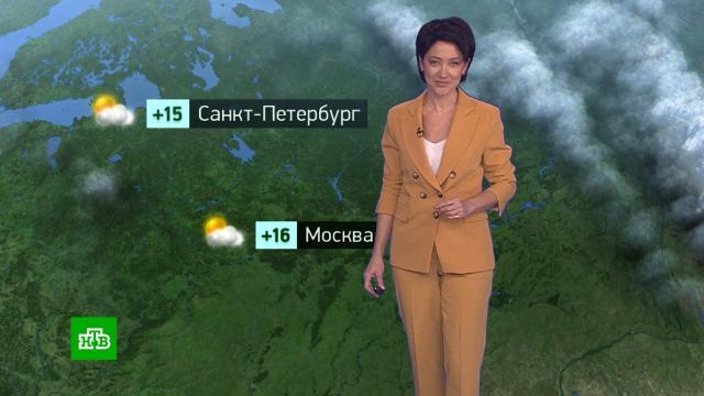 Утренний прогноз погоды на 15сентября.погода, прогноз погоды.НТВ.Ru: новости, видео, программы телеканала НТВ