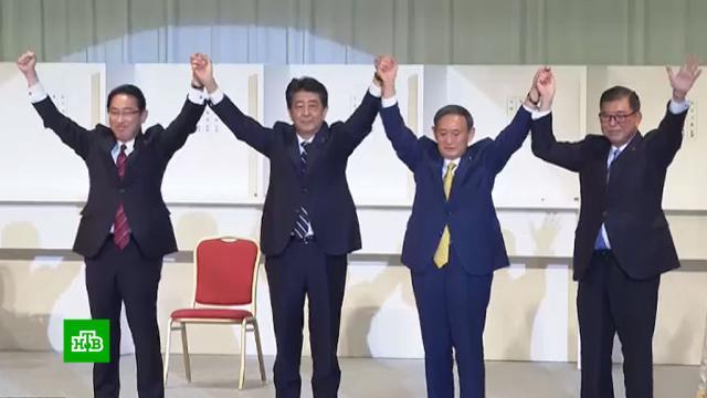 Путин подтвердил готовность кдиалогу сновым правительством Японии.Путин, Япония, назначения и отставки.НТВ.Ru: новости, видео, программы телеканала НТВ