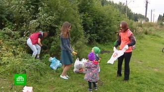 В Ленобласти активисты превратили уборку лесов в экотуризм