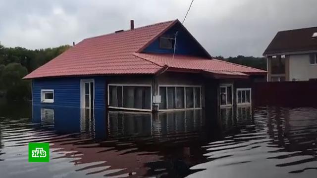 Уровень воды вАмуре уХабаровска превысил 6метров.Еврейская АО, Хабаровский край, наводнения, стихийные бедствия.НТВ.Ru: новости, видео, программы телеканала НТВ