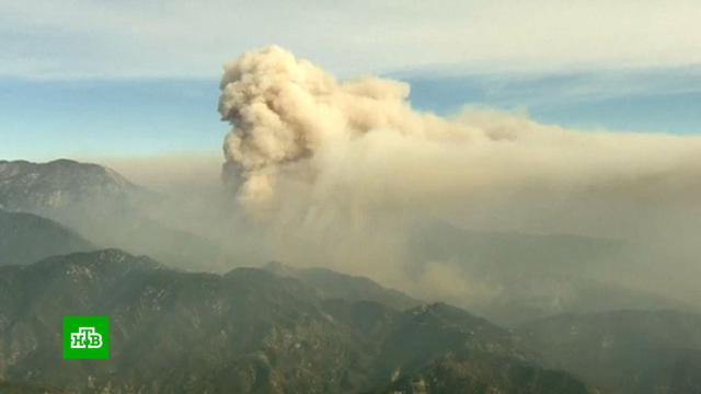 ВКалифорнии спасли от пожара старейшую обсерваторию.США, лесные пожары, пожары.НТВ.Ru: новости, видео, программы телеканала НТВ