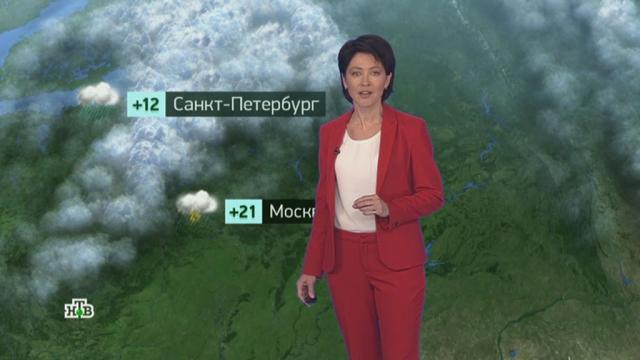 Утренний прогноз погоды на 17сентября.погода, прогноз погоды.НТВ.Ru: новости, видео, программы телеканала НТВ