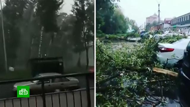 ВМоскве из-за непогоды повреждено более 40автомобилей.Москва, наводнения, погода, погодные аномалии.НТВ.Ru: новости, видео, программы телеканала НТВ