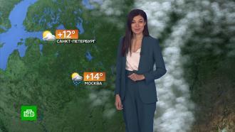 Прогноз погоды на 19сентября.НТВ.Ru: новости, видео, программы телеканала НТВ