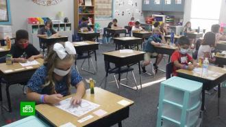 <nobr>Мини-школы</nobr> на дому: американцы вусловиях пандемии создают учебные кооперативы