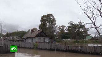 Амур вышел из берегов: вокрестностях Хабаровска затоплены дома идороги