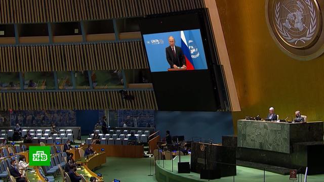 ООН поблагодарила Путина за «щедрый жест» свакциной от COVID-19.ООН, Путин, коронавирус.НТВ.Ru: новости, видео, программы телеканала НТВ