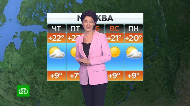 Прогноз погоды на 24 сентября.Прогноз погоды предоставлен «Метео-ТВ».погода, прогноз погоды.НТВ.Ru: новости, видео, программы телеканала НТВ