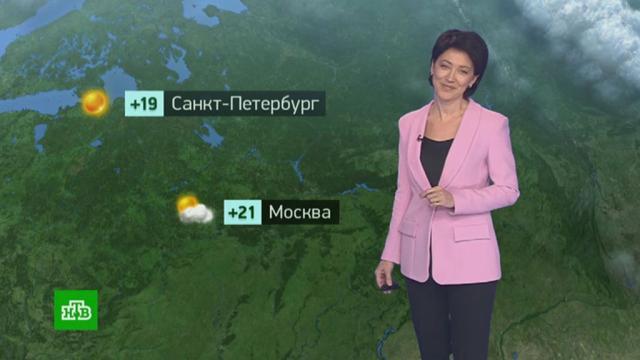 Утренний прогноз погоды на 23сентября.погода, прогноз погоды.НТВ.Ru: новости, видео, программы телеканала НТВ
