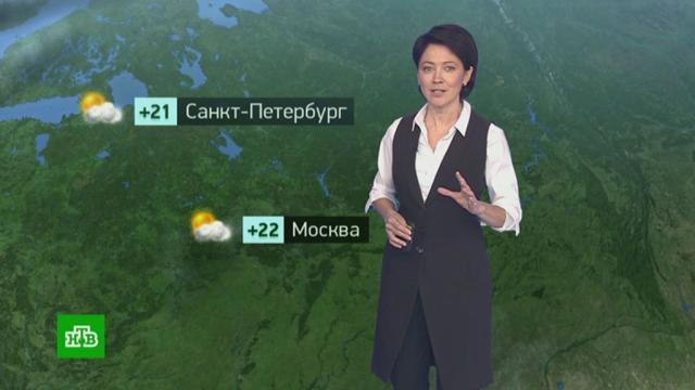 Утренний прогноз погоды на 24сентября.погода, прогноз погоды.НТВ.Ru: новости, видео, программы телеканала НТВ