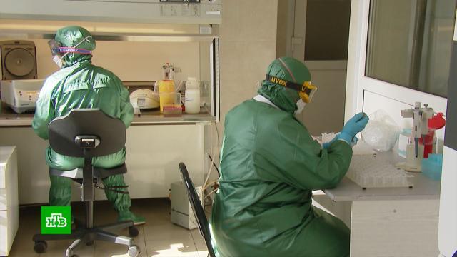 ВРФ— 7, 2тыс. новых случаев коронавируса.болезни, коронавирус, эпидемия.НТВ.Ru: новости, видео, программы телеканала НТВ