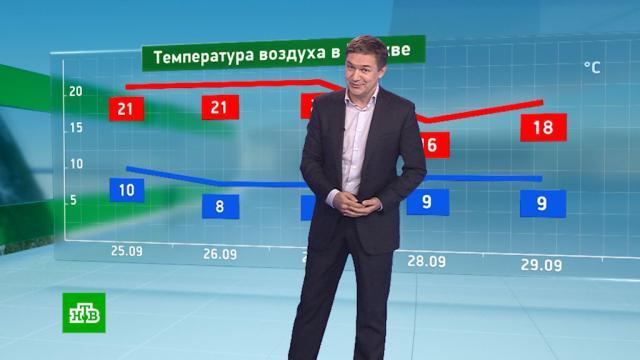 Утренний прогноз погоды на 25сентября.погода, прогноз погоды.НТВ.Ru: новости, видео, программы телеканала НТВ