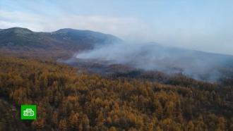 Площадь природных пожаров в России выросла в два раза
