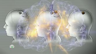 Чип вмозгу: сможетли искуственный интеллект поработить человечество