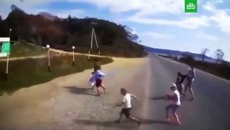 В Приморье грузовик влетел в группу детей