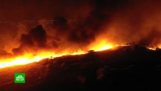 Причиной мощных пожаров вВоронежской области назвали поджоги