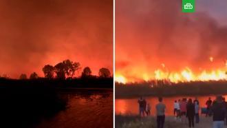 Грандиозные пожары вВоронежской области сняли на видео