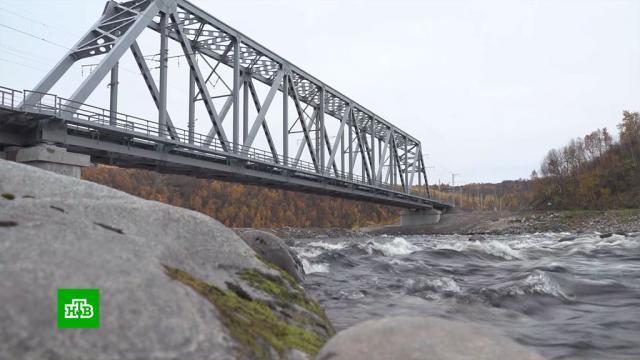 Глава РЖД: новый мост под Мурманском будет анализировать себя сам.Мурманская область, РЖД, железные дороги, мосты.НТВ.Ru: новости, видео, программы телеканала НТВ